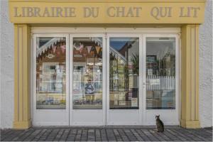 Raymond Fédieu / Le chat qui lit