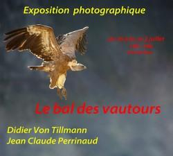 Exposition Von Tillmann-Perrinaud
