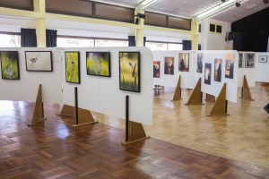 L'exposition...