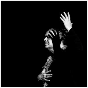 8-YJalabert_Flamenco